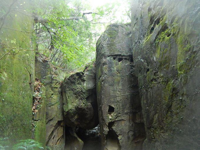 苔むした大岩の向こうには空池が!
