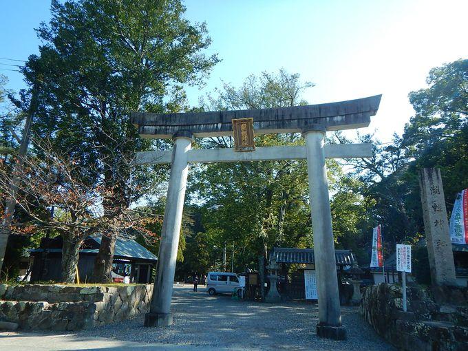 海から山へ世界遺産・熊野古道が繋がった!
