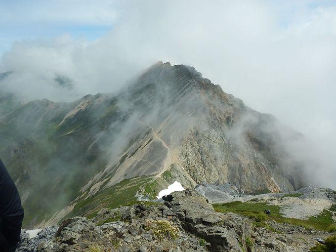 お花畑を見ながら白馬鑓ヶ岳、杓子岳、白馬岳へ