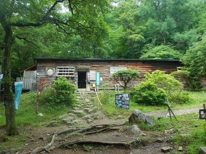 富士見平小屋への道