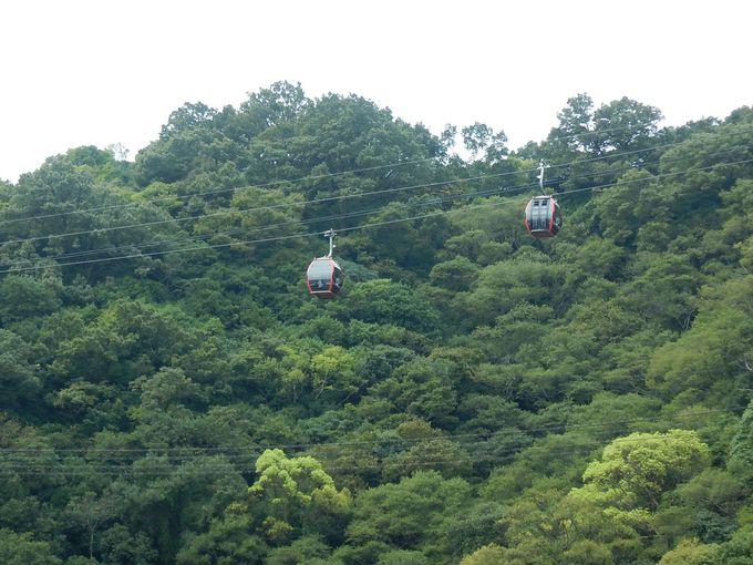 スタートは日本三大神滝・布引の滝