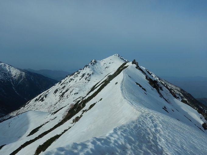 山頂を極めたら、下山後のお楽しみはソースかつ丼