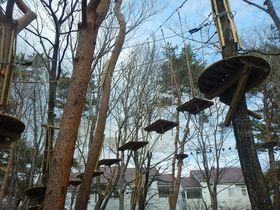 日本最大級の空中アスレチック!那須の森でサルになろう!