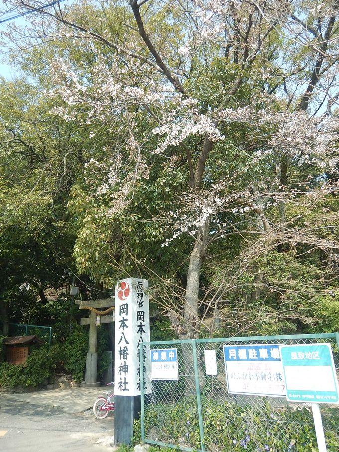 学生の町・岡本にから歩いて保久良梅林へ