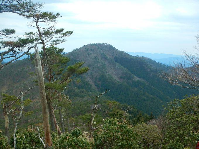 剣尾山から横尾山を越えて
