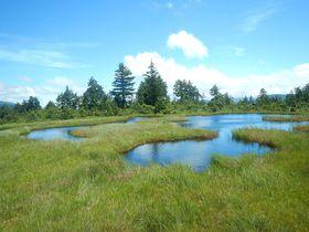 東北最高峰・燧ケ岳へ尾瀬沼からアタック!これぞ尾瀬の風景!