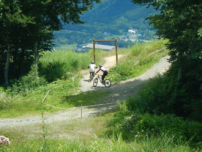 マウンテンバイクの聖地!