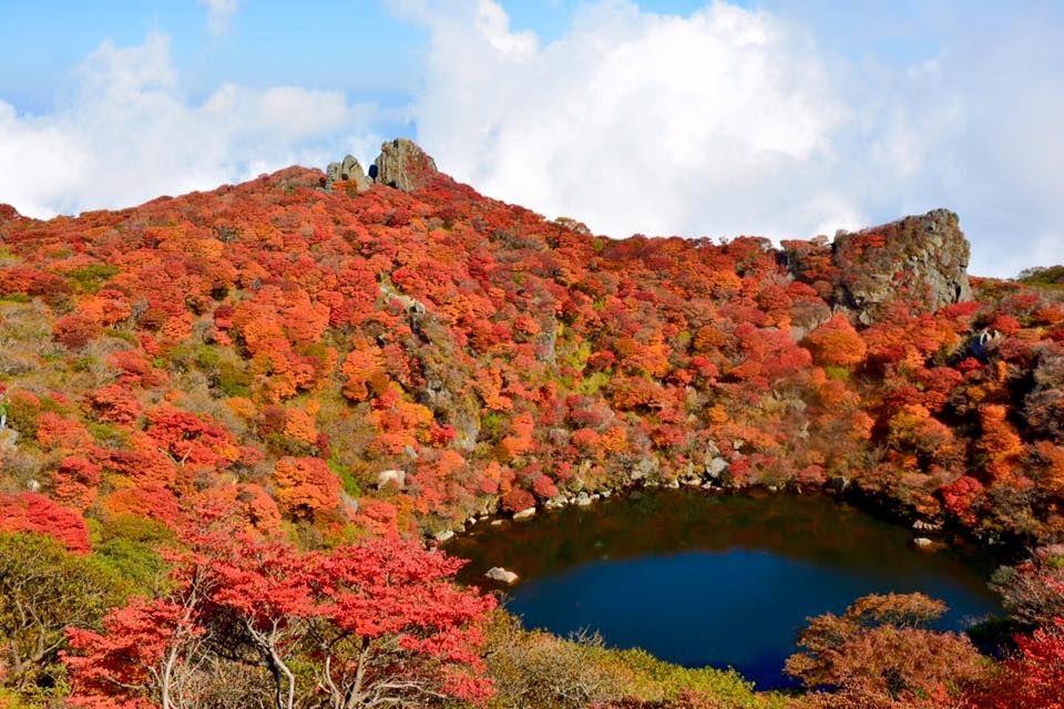 大紅葉が美しい大船山(だいせんざん)へ