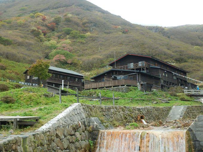 ススキが揺れる法華院温泉山荘でのんびり