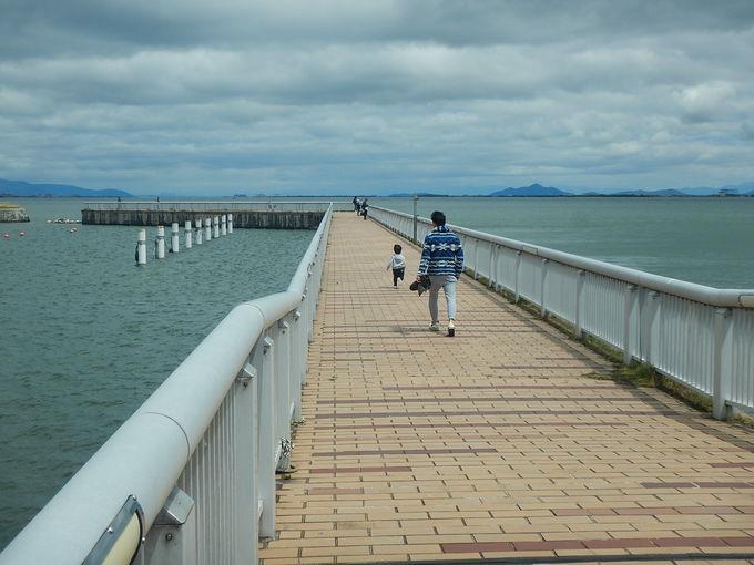 「大津湖岸なぎさ公園」を歩く