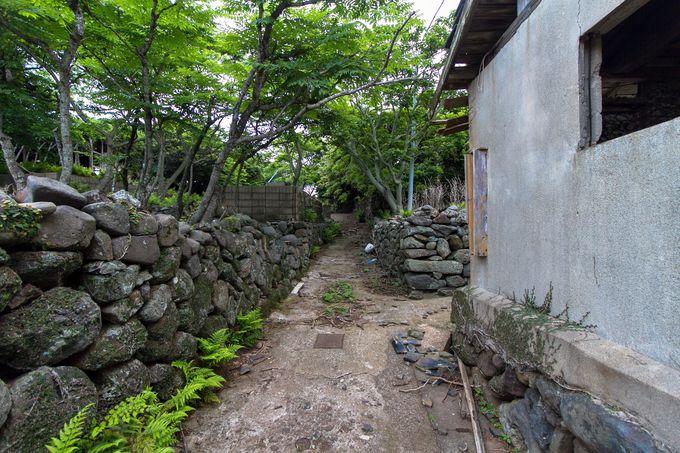 小値賀島から野崎島へ渡る