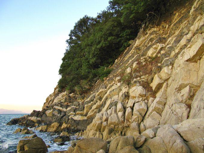 日本では珍しい岩脈「ランプロファイアー」を見ることが出来る