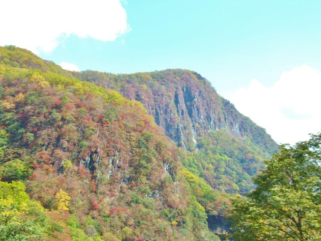 上下で異なる景色が魅力!!紅葉のメッカ「いろは坂」