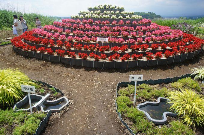 花の富士山や華のナイアガラなど花のオブジェも!