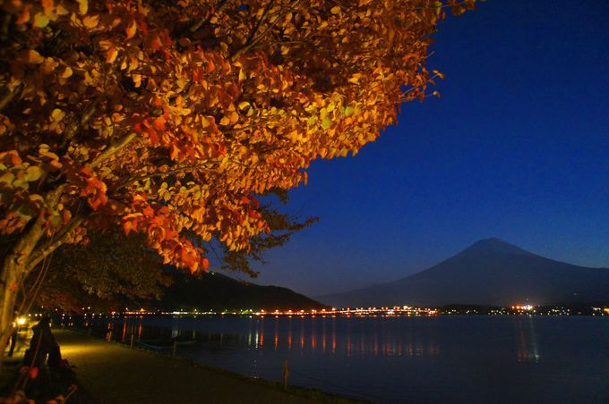 湖岸の散策路から富士山と紅葉