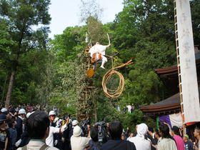 大蛇の奪い合いで会場騒然!山梨甲州市の奇祭・藤切り祭り