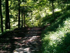 岐阜の避暑地「阿弥陀ヶ滝」に涼を求めて