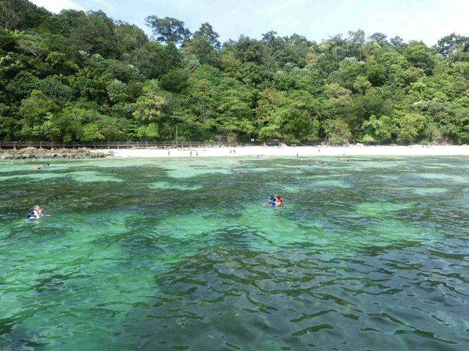 5.パヤ島