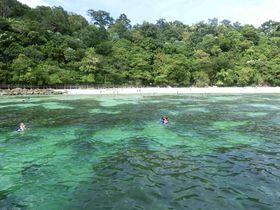 日帰りツアーにも最適!マレーシア「パヤ島」で海を満喫!