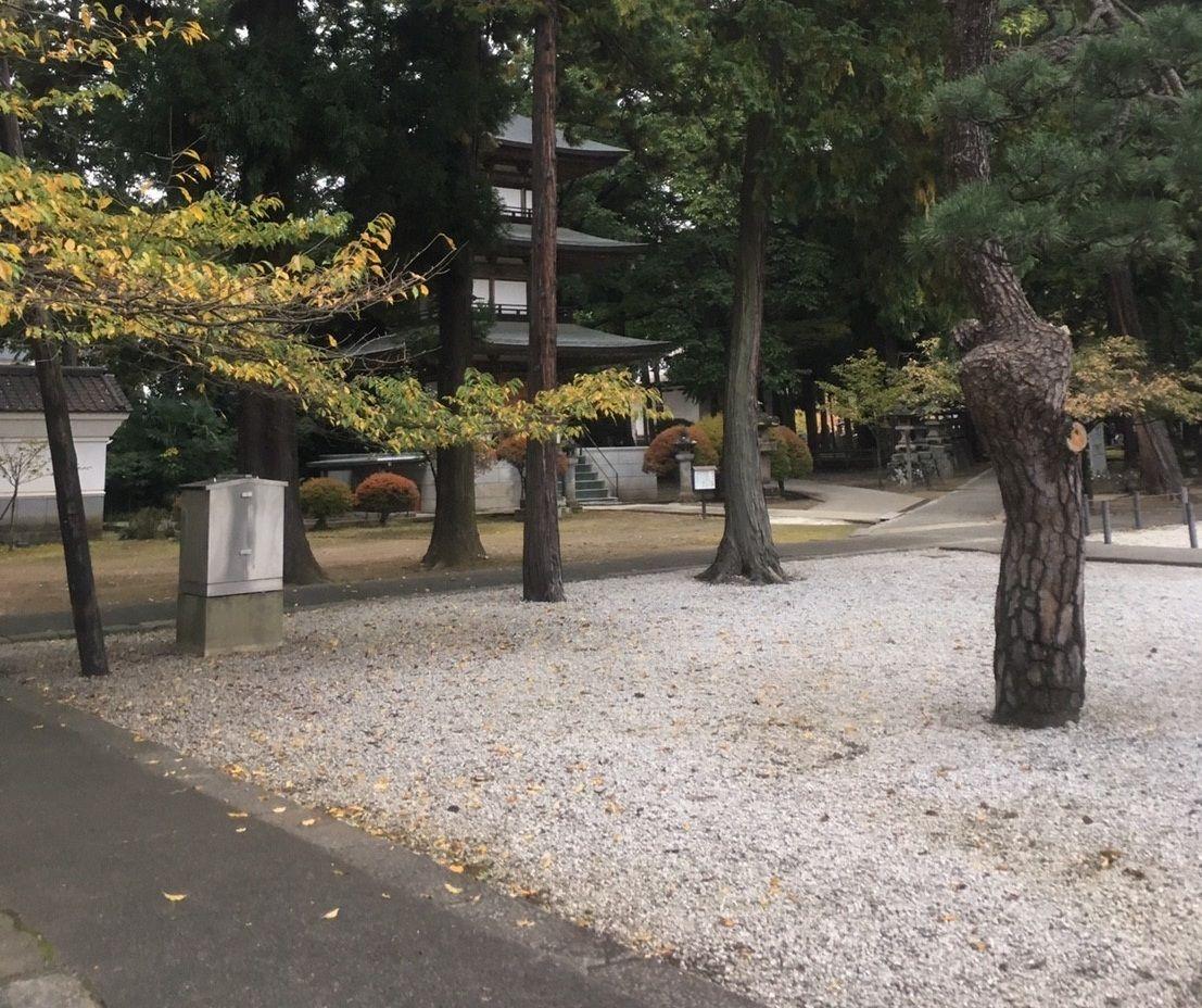 自然そのものを表す、禅宗の庭