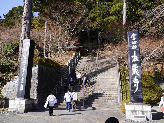 「西の高野」太龍寺の魅力!