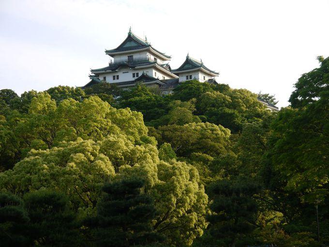 徳川御三家のひとつ和歌山城!