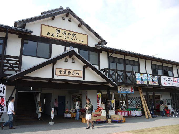 休憩するなら「道の駅東浦ターミナルパーク」