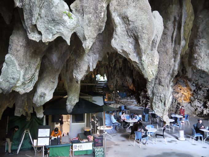 4日目:洞窟がカフェに!?ガンガラーの谷の「ケイブカフェ」