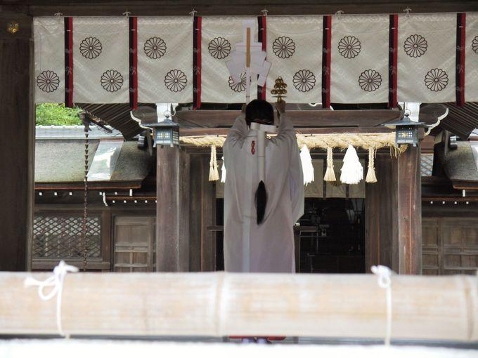 イザナギが余生を過ごした日本最古の神社「伊弉諾神宮」