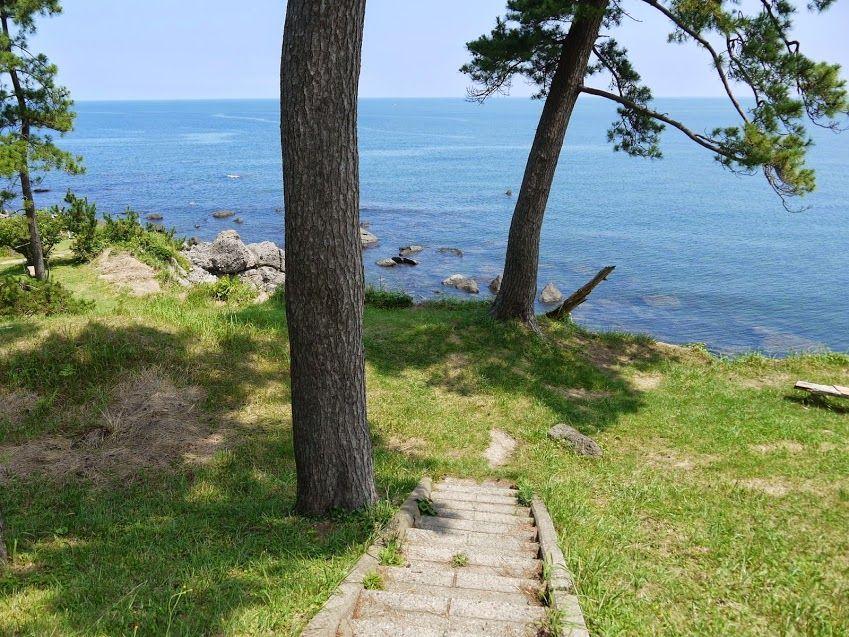 松林の先には美しい海が見える絶景ポイント!