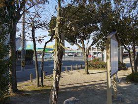 危険!名古屋「桶狭間古戦場跡」には熱病になる木がある!?