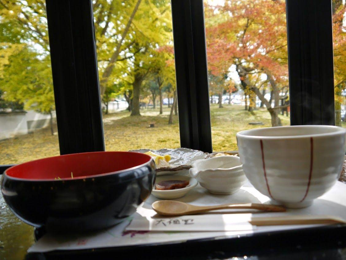 奈良公園横で紅葉を見ながら銀杏定食を!!