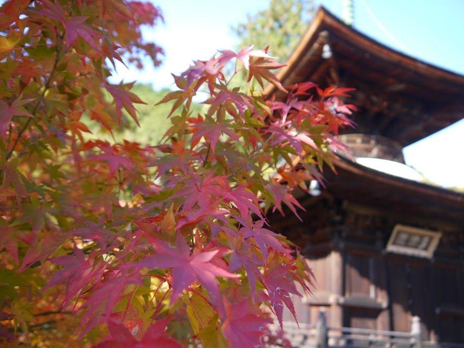 常寂光寺の紅葉は、多宝塔付近で一息を♪