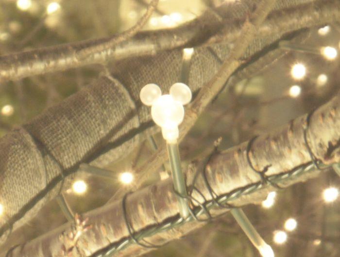 見つけたら感動的に超嬉しい♪隠れミッキーの電球はココにある!
