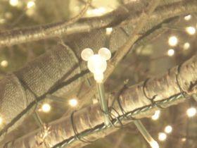 ディズニーの物語が煌めくグランフロント大阪!「隠れミッキー電球」の見つけ方♪