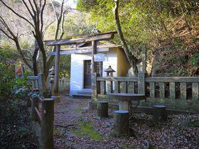 金運UP♪徳島の金長だぬき「金長神社」に参拝し商売繁盛!