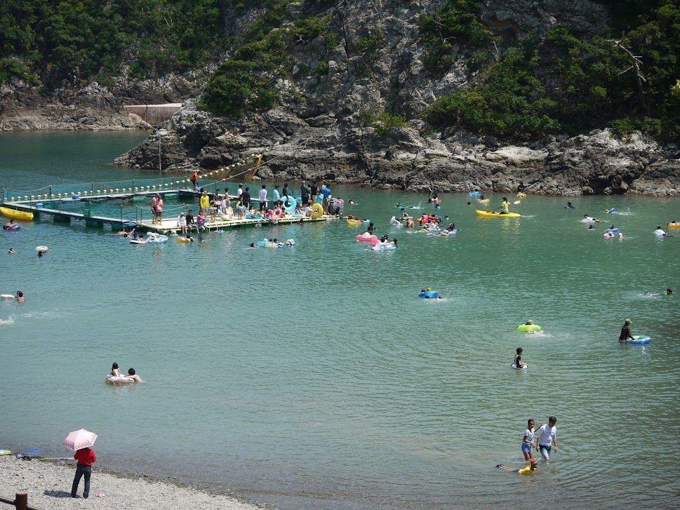 100倍楽しめる!クジラと一緒に泳げる日本で唯一の海水浴場