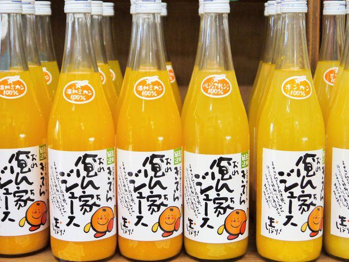 やっぱり和歌山はミカンが美味しい!