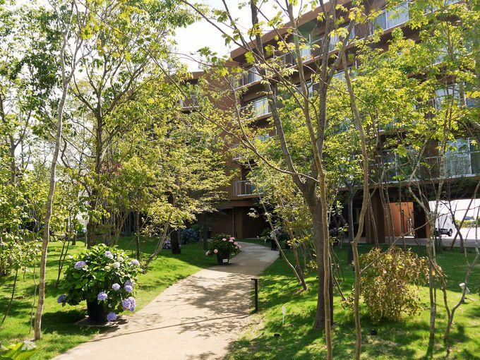 ここは本当に大阪市内?緑に満ちた素敵なホテル