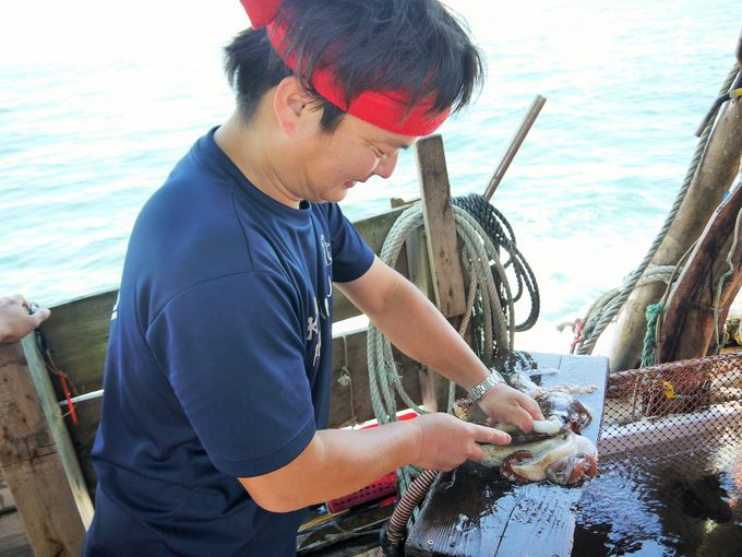 うまっ!網で捕れたタコや魚をその場で食べる感動体験