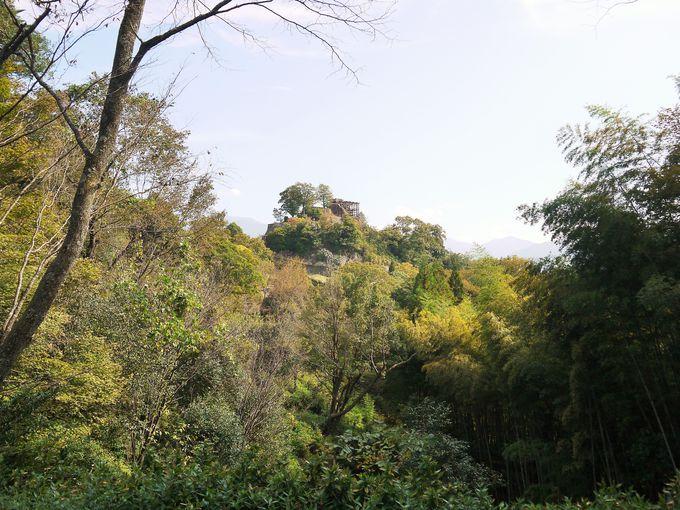 まるで龍の住む城?!今注目が集まる苗木城跡