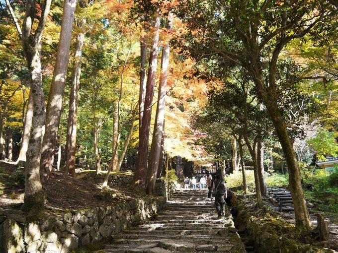 百済寺は山城の最後の形、安土城は平城の最初の形