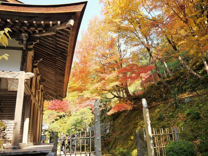 滋賀県の紅葉名所!百済寺は入り口付近も美しい