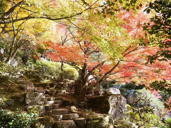 紅葉が見事な「天下遠望の名園」