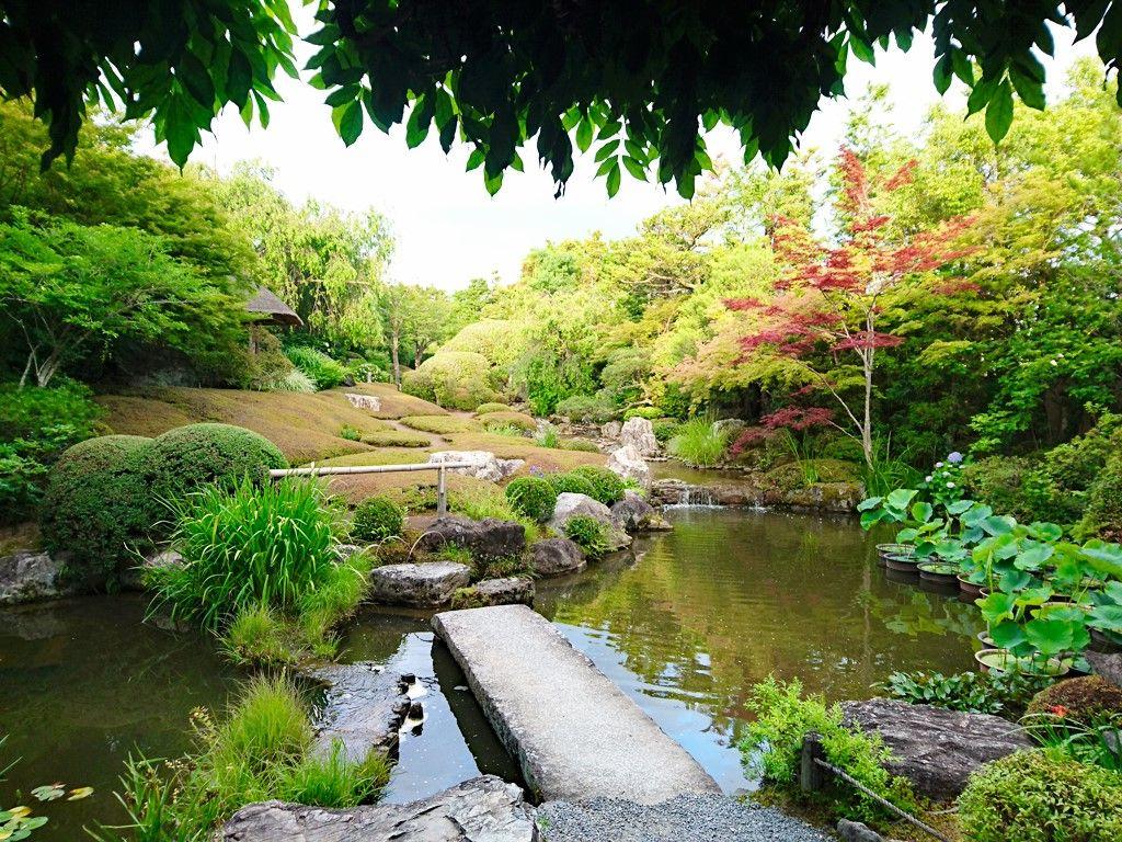枯山水庭園「元信の庭」&四季折々の「余香苑」