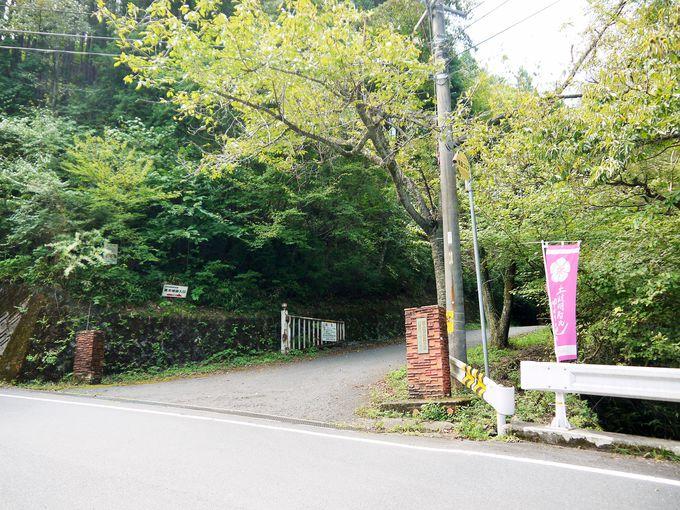 妻木城跡へ行く一番簡単なルート