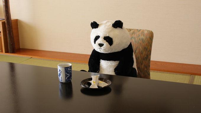 お部屋にパンダ付き!「赤ちゃんパンダ誕生記念 特別プラン」