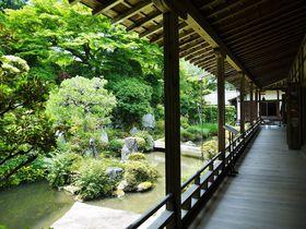 光秀と同一人物?滋賀県坂本で天海ゆかりの滋賀院門跡を巡る