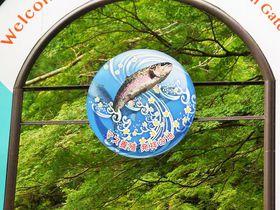 滋賀県でマス釣りなら!マス養殖発祥の地「醒井養鱒場」がおすすめ