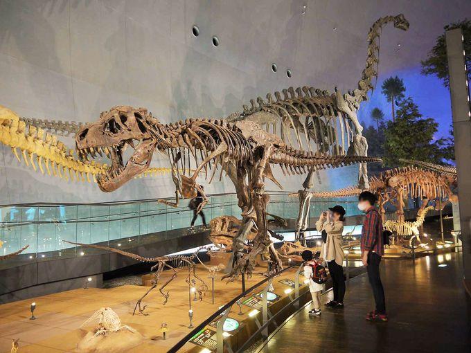 1.福井県立恐竜博物館
